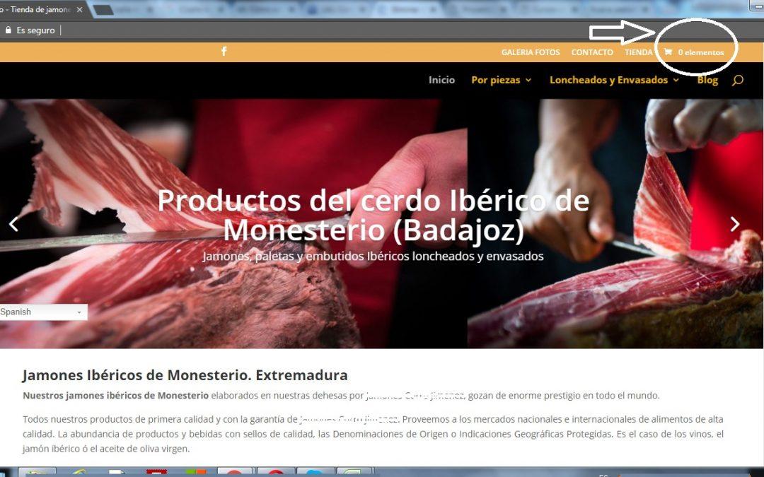 Curso WordPress Divi Quitar Icono Carrito Woocommerce