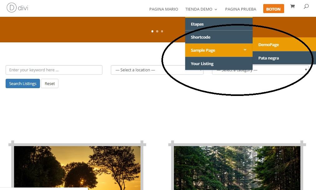 personalizar menu en tema divi