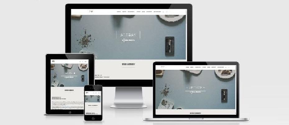 6 mejores themes para crear una tienda online con Divi